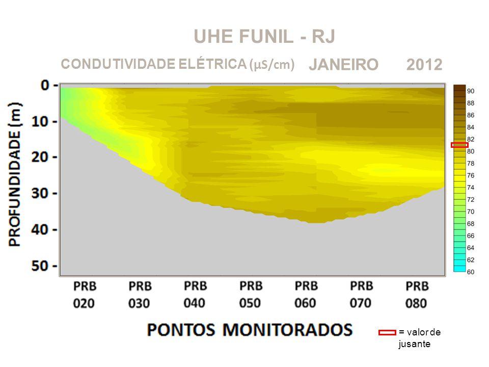 UHE FUNIL - RJ 2012JANEIRO CONDUTIVIDADE ELÉTRICA ( μS/cm ) = valor de jusante