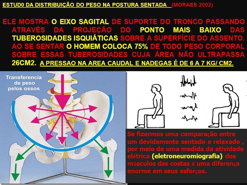 ESTUD0 DA DISTRIBUIÇÃO DO PESO NA POSTURA SENTADA (MORAES 2002) ELE MOSTRA O EIXO SAGITAL DE SUPORTE DO TRONCO PASSANDO ATRAVÉS DA PROJEÇÃO DO PONTO MAIS BAIXO DAS TUBEROSIDADES ISQUIÁTICAS SOBRE A SUPERFÍCIE DO ASSENTO.