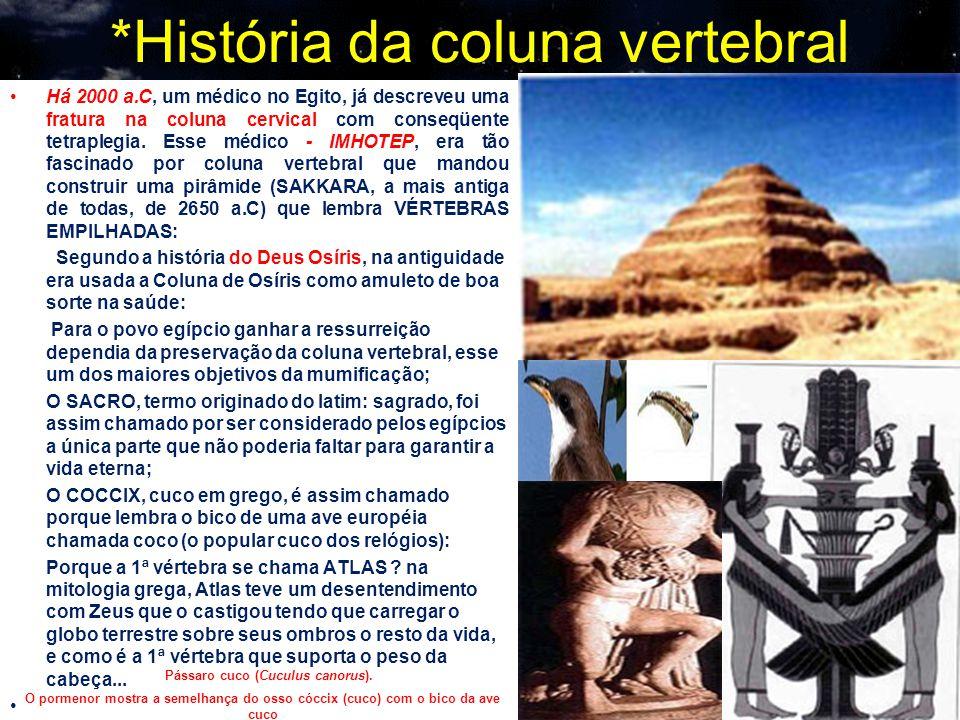 *História da coluna vertebral Há 2000 a.C, um médico no Egito, já descreveu uma fratura na coluna cervical com conseqüente tetraplegia. Esse médico -
