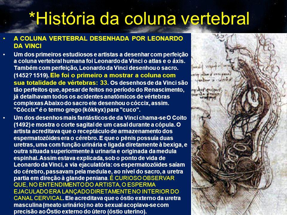 *História da coluna vertebral A COLUNA VERTEBRAL DESENHADA POR LEONARDO DA VINCI Um dos primeiros estudiosos e artistas a desenhar com perfeição a col