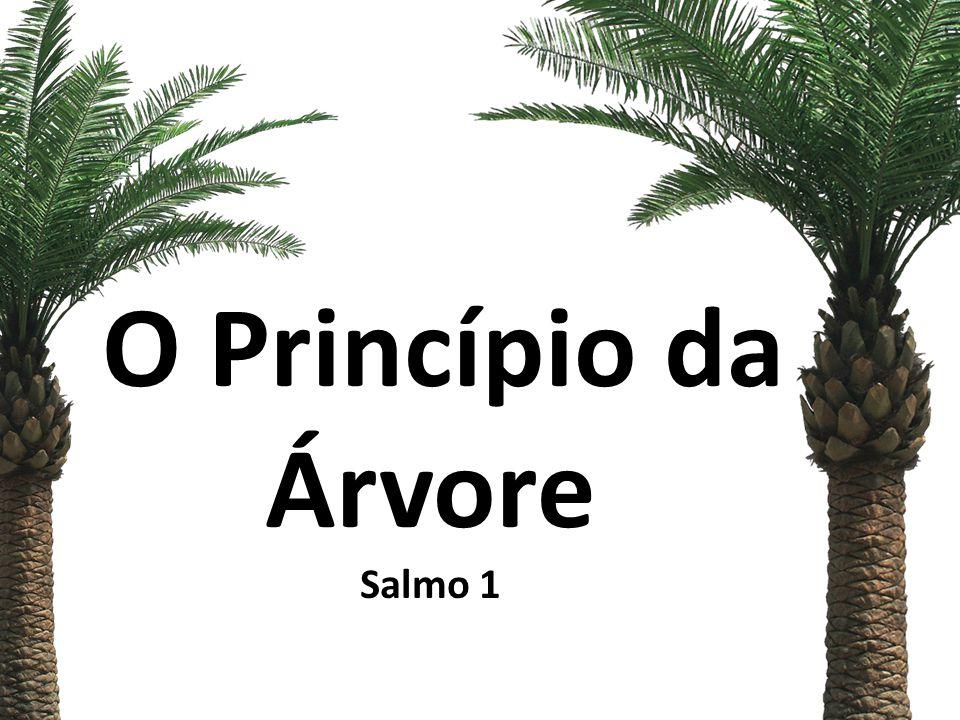 Salmos 1 1 Como é feliz aquele que não segue o conselho dos ímpios, não imita a conduta dos pecadores, nem assenta na roda dos zombadores!