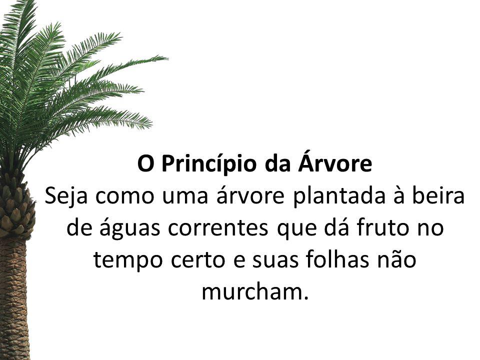 O Princípio da Árvore Seja como uma árvore plantada à beira de águas correntes que dá fruto no tempo certo e suas folhas não murcham.