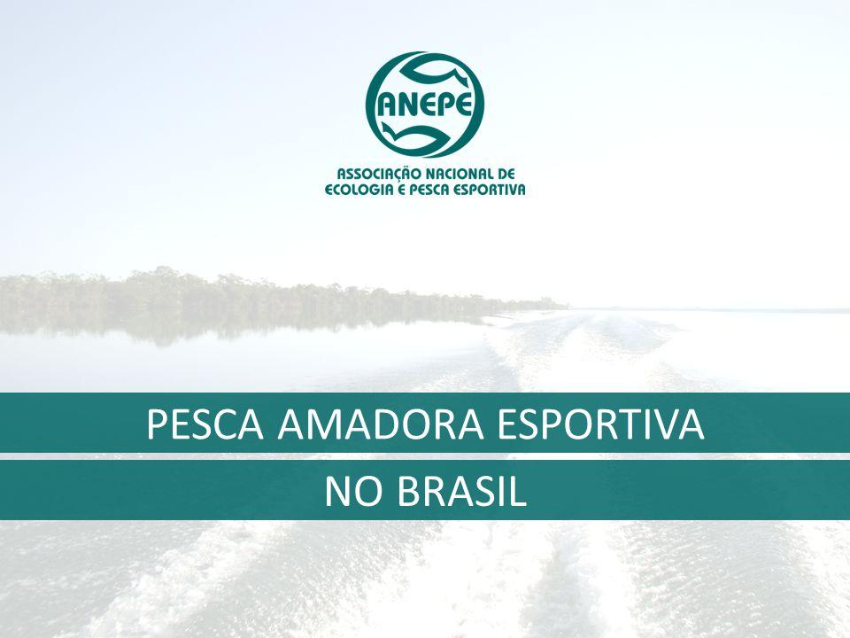 Associação Nacional de Ecologia e Pesca Esportiva   www.anepe.org.br Pesquisa realizada com 53.800 pessoas (Homens e Mulheres acima de 10 anos) A amostra representa universo de 48 Milhões de pessoas 7,8 milhões (16%) têm o hábito de pescar Fonte: IPSOS 2004 e 2014, Hábitos de Pesca.