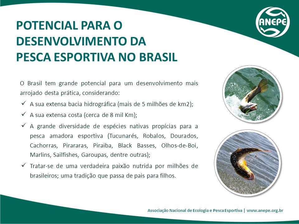 Associação Nacional de Ecologia e Pesca Esportiva | www.anepe.org.br O Brasil tem grande potencial para um desenvolvimento mais arrojado desta prática