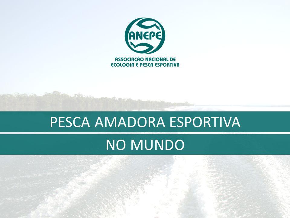 NO MUNDO PESCA AMADORA ESPORTIVA