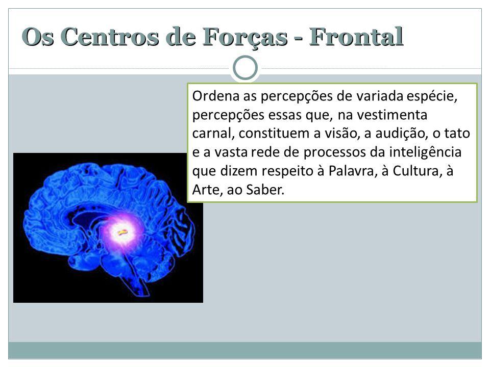 Os Centros de Forças - Frontal Ordena as percepções de variada espécie, percepções essas que, na vestimenta carnal, constituem a visão, a audição, o t
