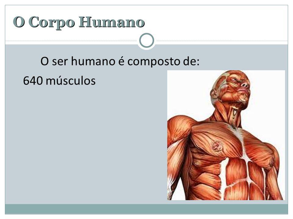 O Corpo Humano O ser humano é composto de: 640 músculos 3 bilhões de fibras nervosas