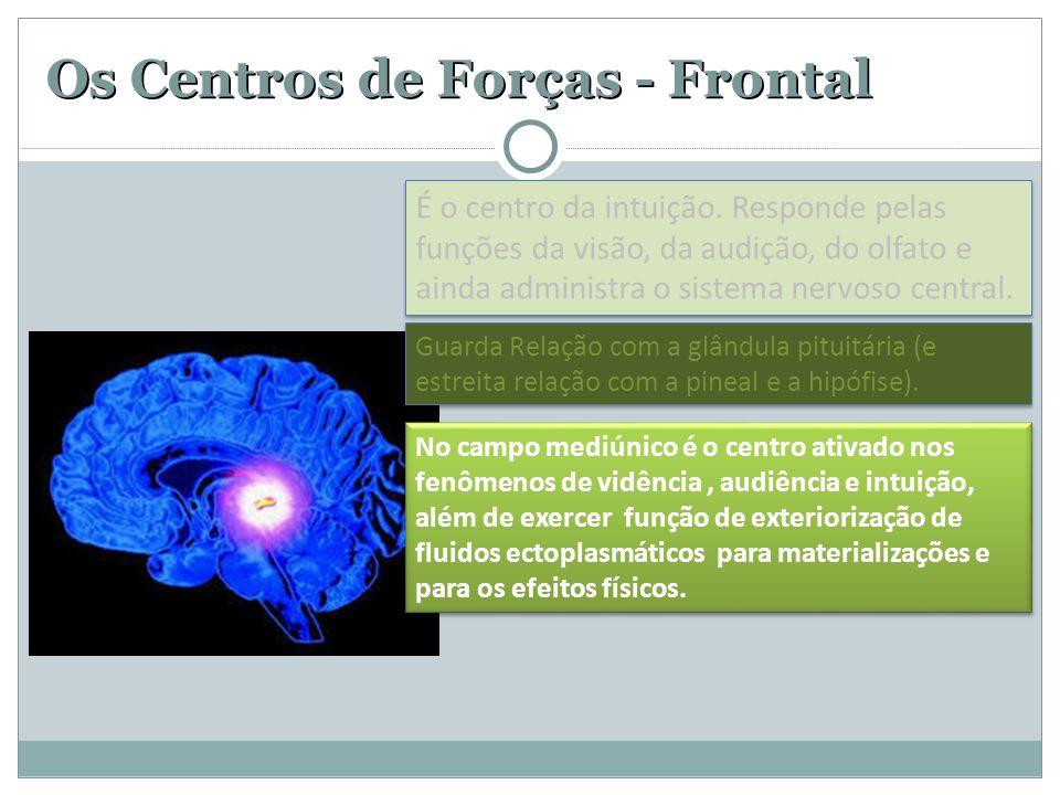 Os Centros de Forças - Frontal Guarda Relação com a glândula pituitária (e estreita relação com a pineal e a hipófise). No campo mediúnico é o centro