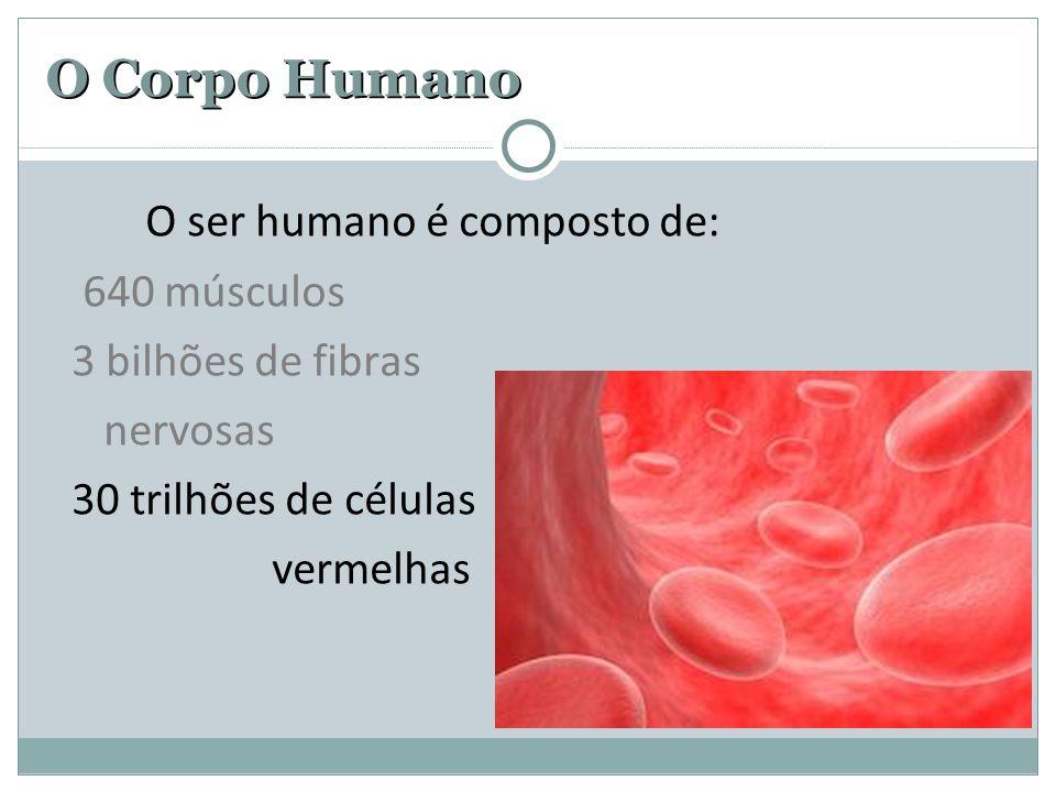 O Corpo Humano O ser humano é composto de: 640 músculos 3 bilhões de fibras nervosas 30 trilhões células vermelhas 100 bilhões de neurônios