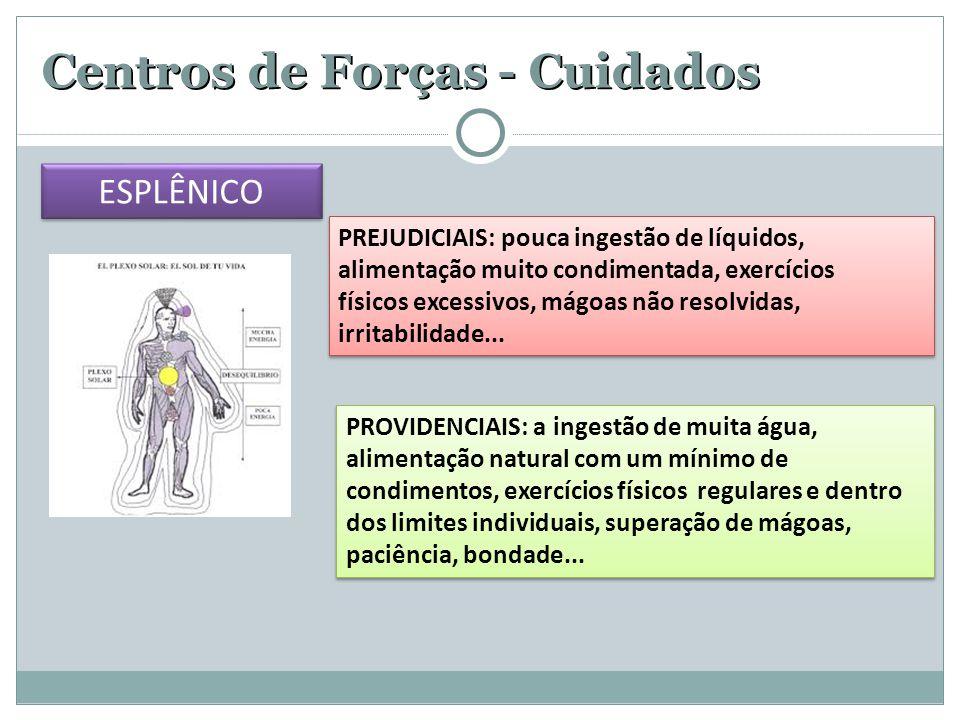 Centros de Forças - Cuidados PREJUDICIAIS: pouca ingestão de líquidos, alimentação muito condimentada, exercícios físicos excessivos, mágoas não resol