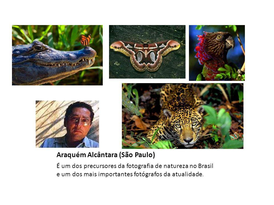 Araquém Alcântara (São Paulo) É um dos precursores da fotografia de natureza no Brasil e um dos mais importantes fotógrafos da atualidade.