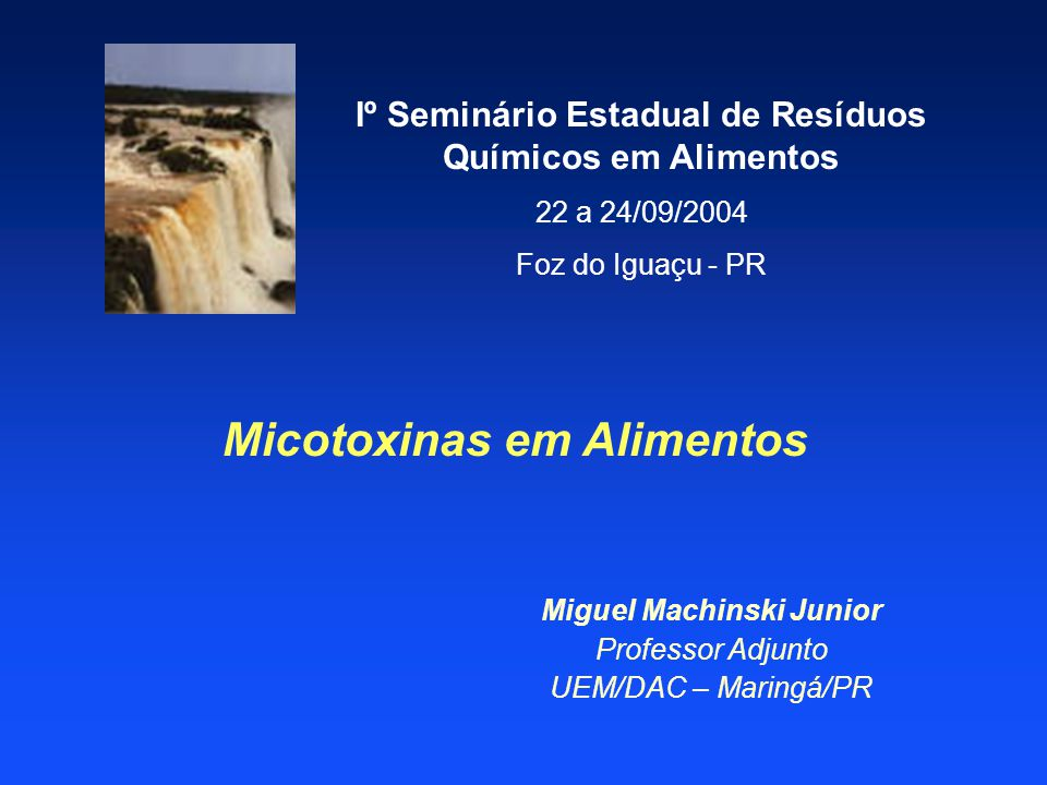 Micotoxinas em Alimentos Miguel Machinski Junior Professor Adjunto UEM/DAC – Maringá/PR Iº Seminário Estadual de Resíduos Químicos em Alimentos 22 a 2