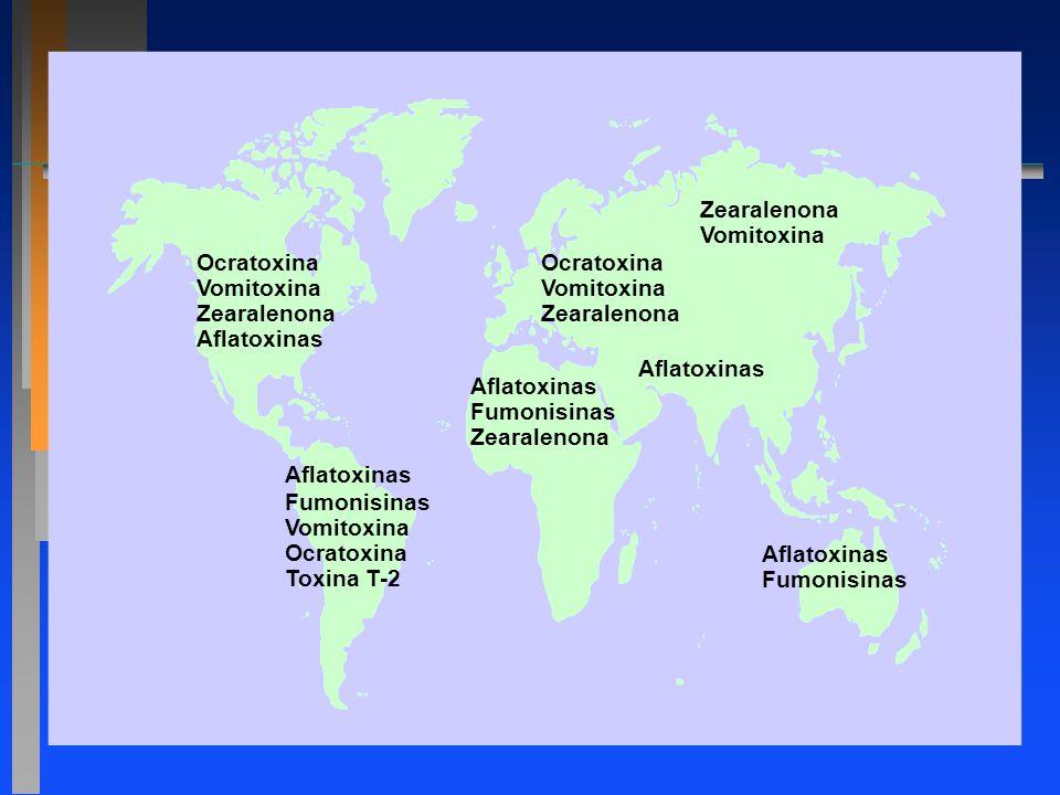 Ocratoxina Vomitoxina Zearalenona Aflatoxinas Fumonisinas Vomitoxina Ocratoxina Toxina T-2 Aflatoxinas Fumonisinas Zearalenona Ocratoxina Vomitoxina Z