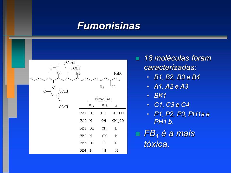 Fumonisinas n 18 moléculas foram caracterizadas: B1, B2, B3 e B4B1, B2, B3 e B4 A1, A2 e A3A1, A2 e A3 BK1BK1 C1, C3 e C4C1, C3 e C4 P1, P2, P3, PH1a