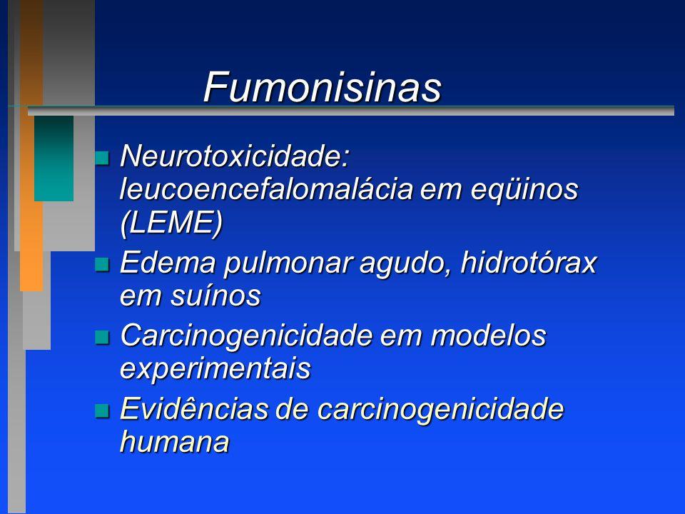 Fumonisinas n Neurotoxicidade: leucoencefalomalácia em eqüinos (LEME) n Edema pulmonar agudo, hidrotórax em suínos n Carcinogenicidade em modelos expe