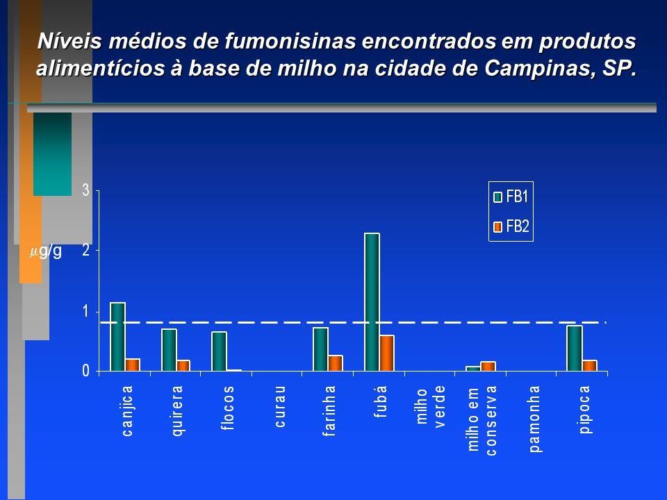 Níveis médios de fumonisinas encontrados em produtos alimentícios à base de milho na cidade de Campinas, SP.  g/g