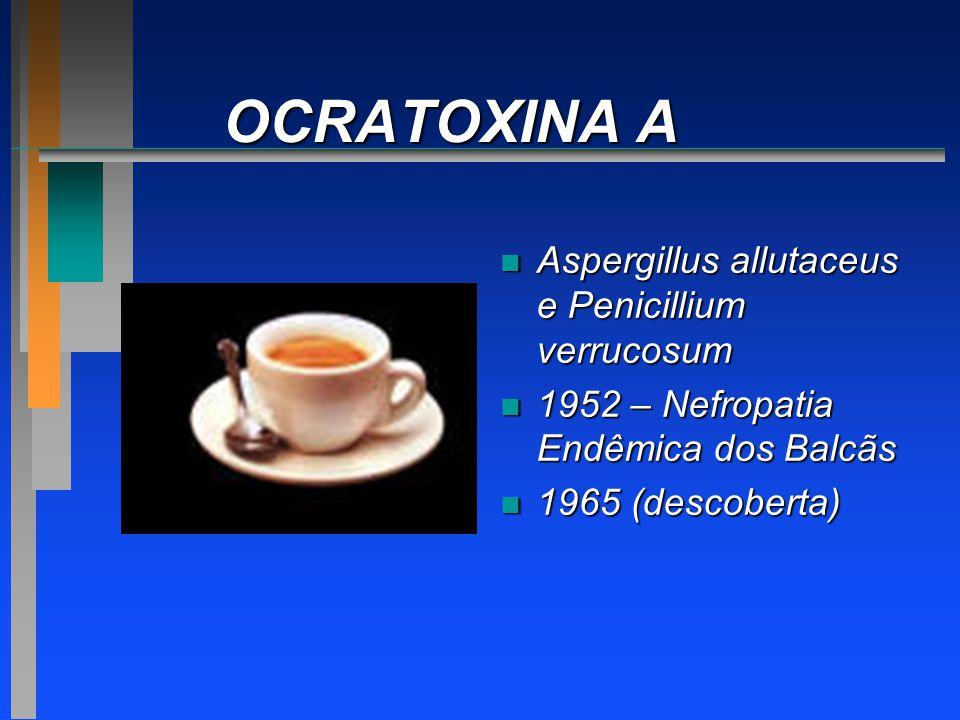 OCRATOXINA A n Aspergillus allutaceus e Penicillium verrucosum n 1952 – Nefropatia Endêmica dos Balcãs n 1965 (descoberta)