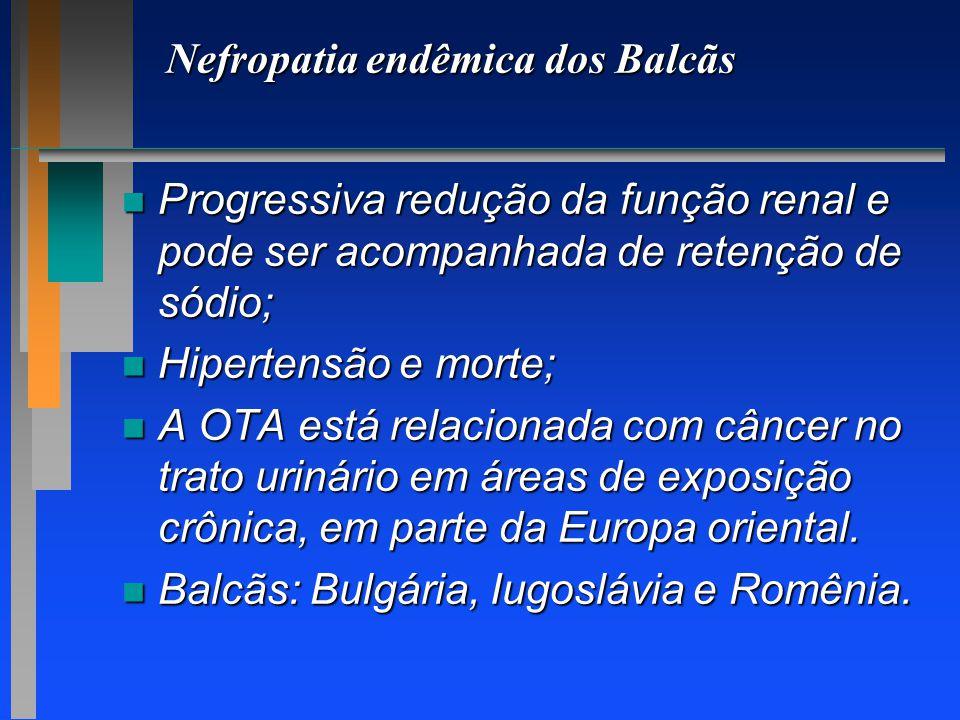 Nefropatia endêmica dos Balcãs n Progressiva redução da função renal e pode ser acompanhada de retenção de sódio; n Hipertensão e morte; n A OTA está