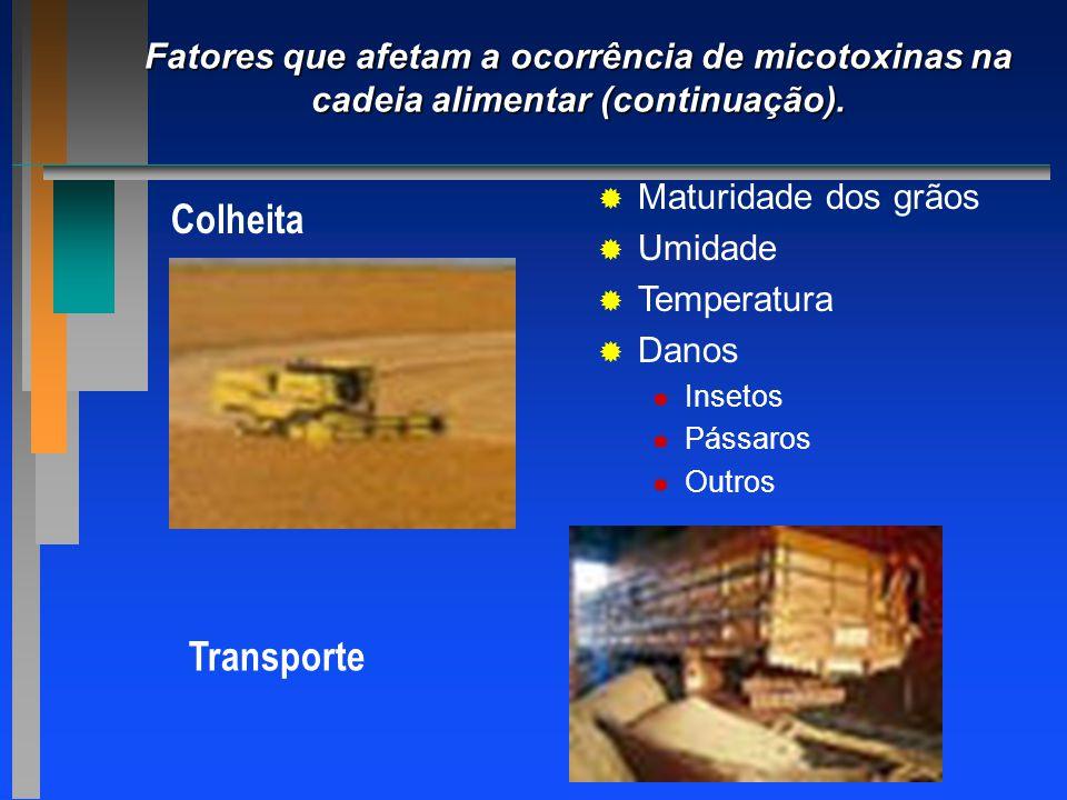 Fatores que afetam a ocorrência de micotoxinas na cadeia alimentar (continuação). Colheita   Maturidade dos grãos   Umidade   Temperatura   Da