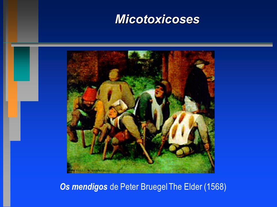 Micotoxicoses Os mendigos de Peter Bruegel The Elder (1568)