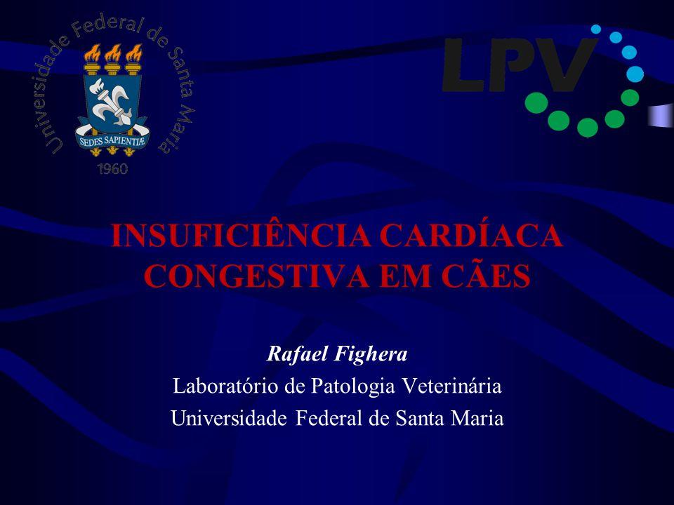 INSUFICIÊNCIA CARDÍACA CONGESTIVA EM CÃES Rafael Fighera Laboratório de Patologia Veterinária Universidade Federal de Santa Maria