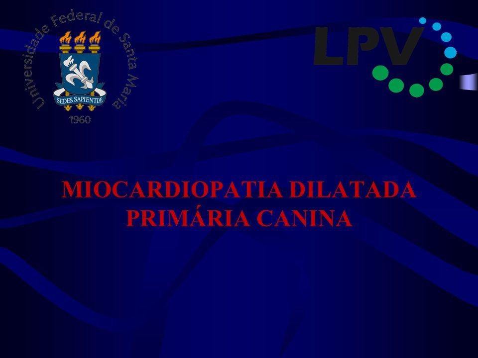 MIOCARDIOPATIA DILATADA PRIMÁRIA CANINA