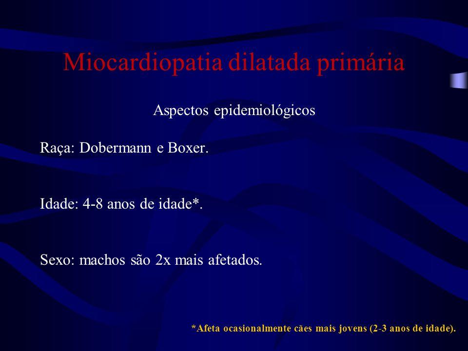 Miocardiopatia dilatada primária Aspectos epidemiológicos Raça: Dobermann e Boxer.