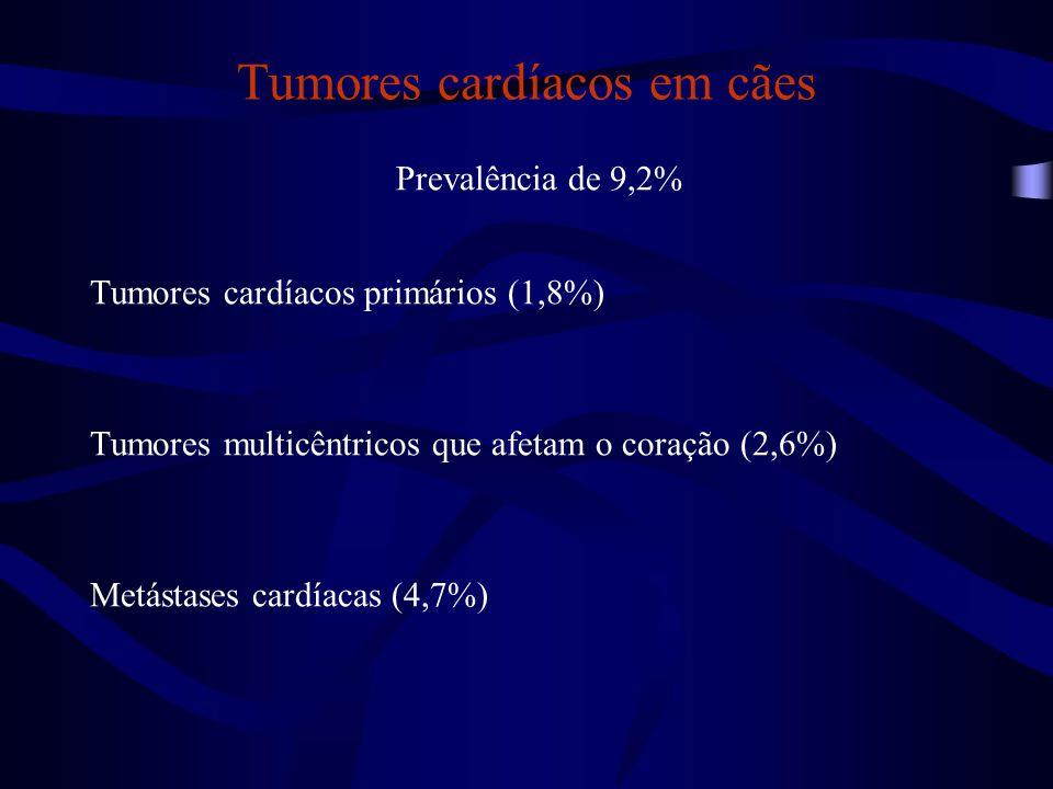 Tumores cardíacos em cães Prevalência de 9,2% Tumores cardíacos primários (1,8%) Tumores multicêntricos que afetam o coração (2,6%) Metástases cardíacas (4,7%)