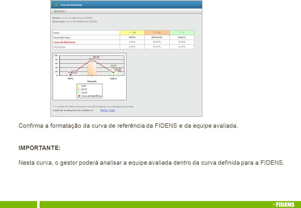 Confirma a formatação da curva de referência da FIDENS e da equipe avaliada.