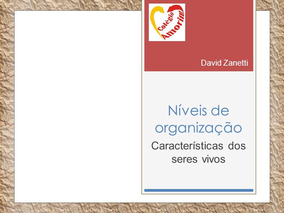 Níveis de organização Características dos seres vivos David Zanetti