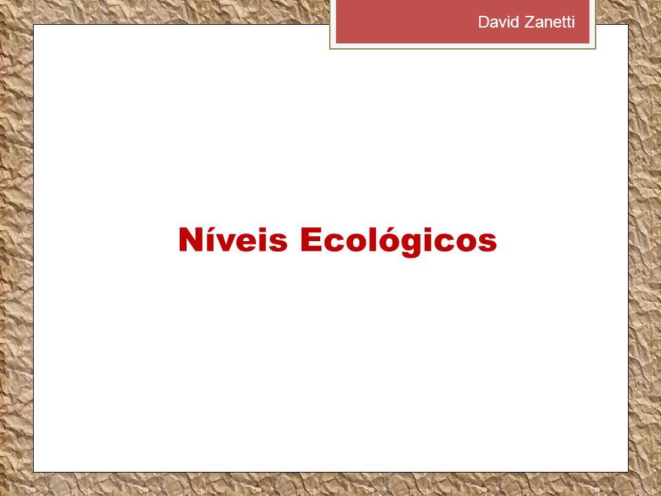 Níveis Ecológicos