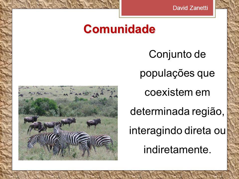 Comunidade Conjunto de populações que coexistem em determinada região, interagindo direta ou indiretamente. David Zanetti