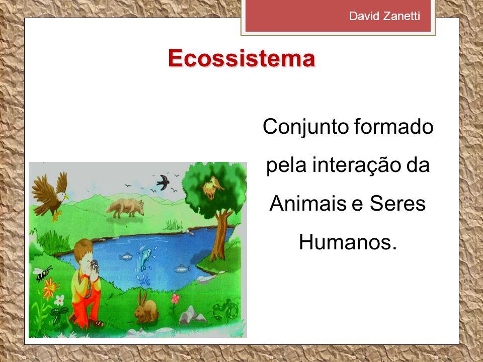 Ecossistema Conjunto formado pela interação da Animais e Seres Humanos. David Zanetti
