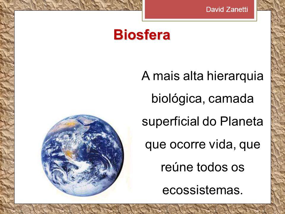 Biosfera A mais alta hierarquia biológica, camada superficial do Planeta que ocorre vida, que reúne todos os ecossistemas. David Zanetti