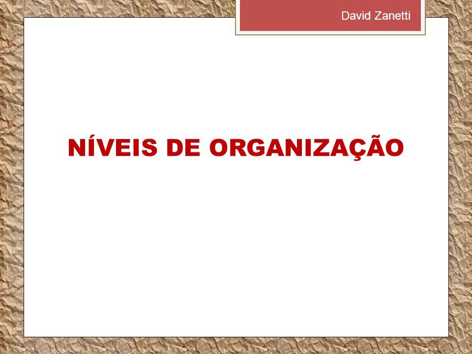 NÍVEIS DE ORGANIZAÇÃO David Zanetti