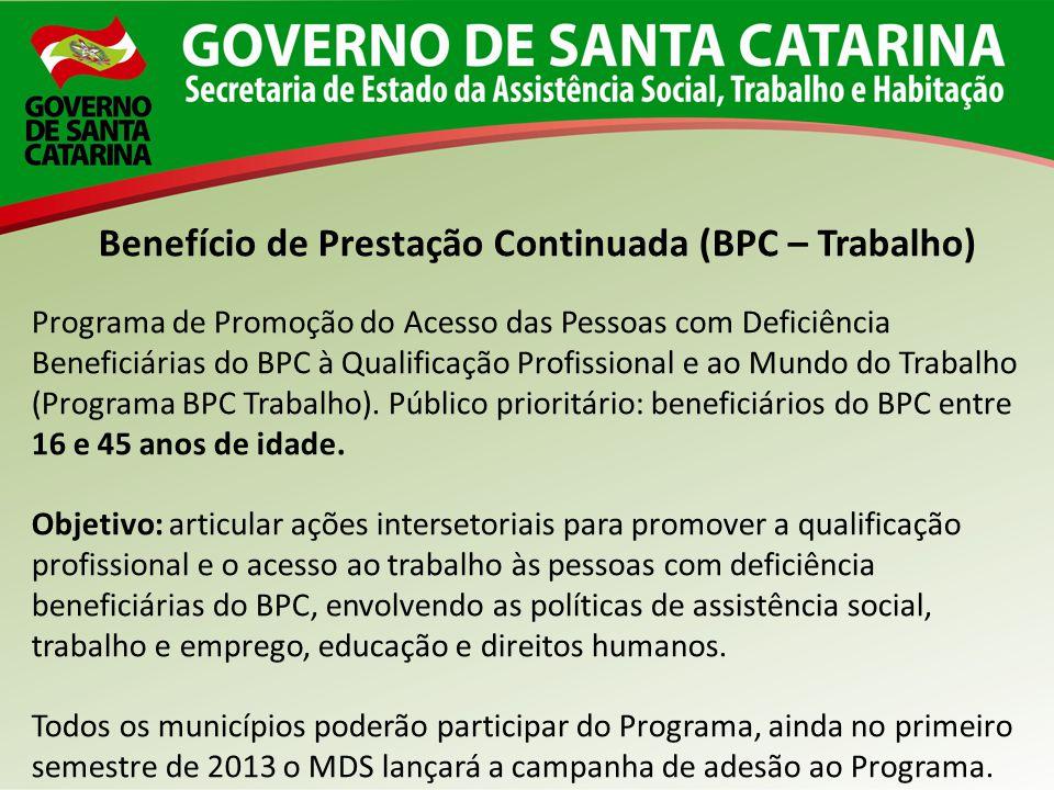 Benefício de Prestação Continuada (BPC – Trabalho) Programa de Promoção do Acesso das Pessoas com Deficiência Beneficiárias do BPC à Qualificação Prof
