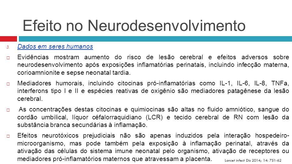 Efeito no Neurodesenvolvimento Lancet infect Dis 2014; 14: 751-62 3. Dados em seres humanos  Evidências mostram aumento do risco de lesão cerebral e