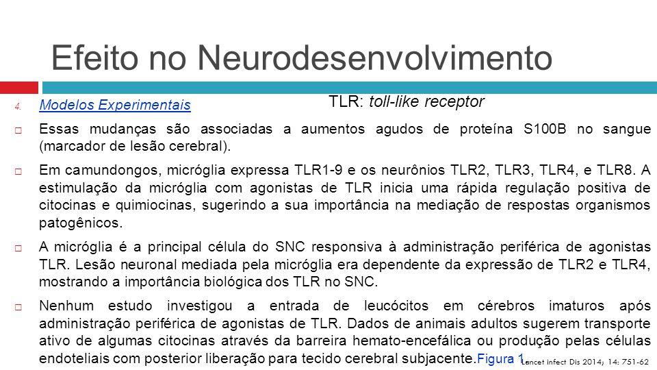 Efeito no Neurodesenvolvimento Lancet infect Dis 2014; 14: 751-62 4. Modelos Experimentais  Essas mudanças são associadas a aumentos agudos de proteí