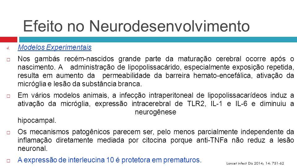 Efeito no Neurodesenvolvimento Lancet infect Dis 2014; 14: 751-62 4. Modelos Experimentais  Nos gambás recém-nascidos grande parte da maturação cereb