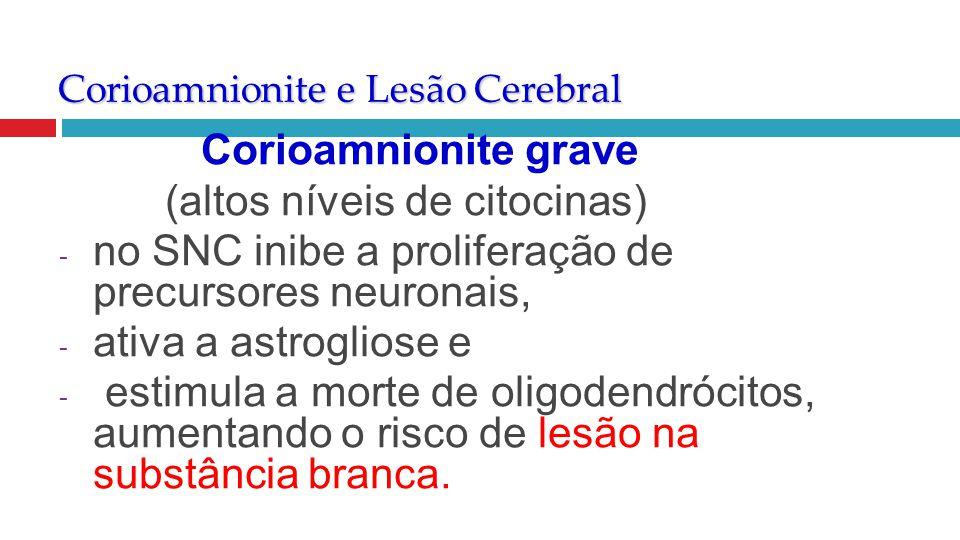 Corioamnionite e Lesão Cerebral Corioamnionite grave (altos níveis de citocinas) - no SNC inibe a proliferação de precursores neuronais, - ativa a ast