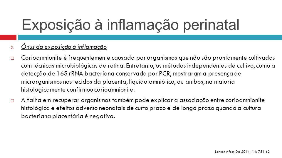  Receptores agonistas: - A infecção bacteriana aumenta a vulnerabilidade dos cérebros dos prematuros para a insultos não-inflamatórios; - Em recém-nascidos humanos, a combinação de infecção materna e asfixia aumenta o risco de paralisia cerebral; - A administração de lipopolissacárido em fetos de rato e crias de ratos recém- nascidos induz a expressão de CD14 e TLR4 cerebral o que sensibiliza o cérebro imaturo a lesão hipóxico-isquêmica; Lancet infect Dis 2014; 14: 751-62 Reconhecimento dos padrões bactericidas