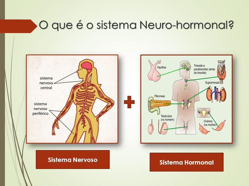 O que é o sistema Neuro-hormonal? Sistema Nervoso Sistema Hormonal