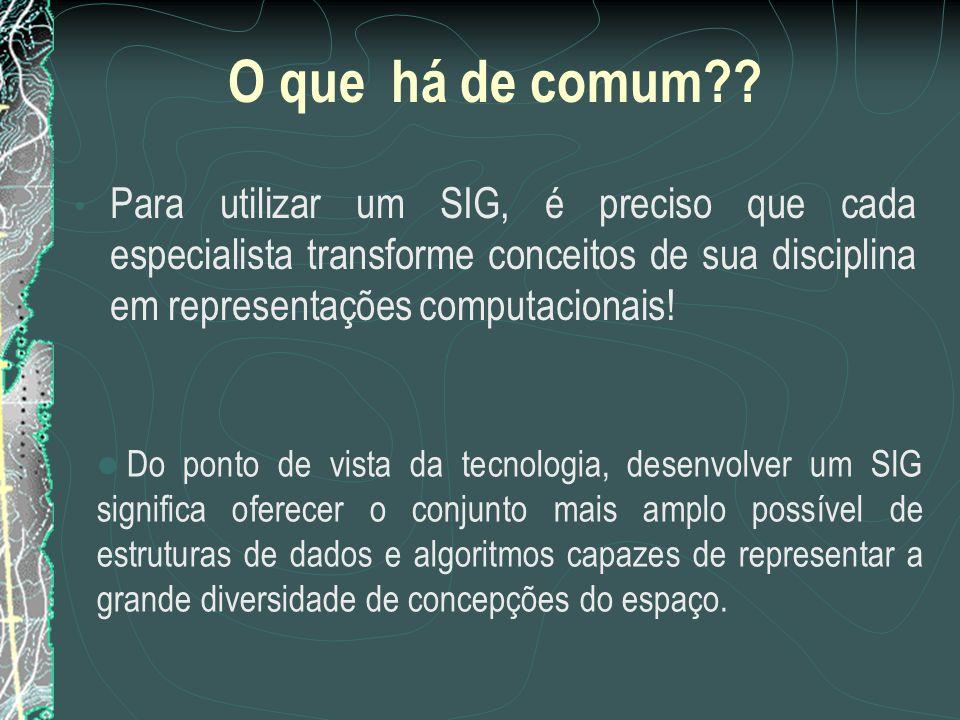 O que há de comum?? Para utilizar um SIG, é preciso que cada especialista transforme conceitos de sua disciplina em representações computacionais! Do