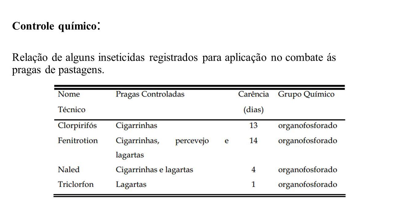 Controle químico : Relação de alguns inseticidas registrados para aplicação no combate ás pragas de pastagens.