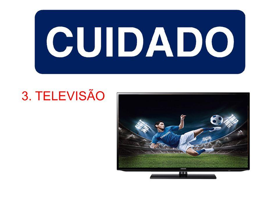 3. TELEVISÃO