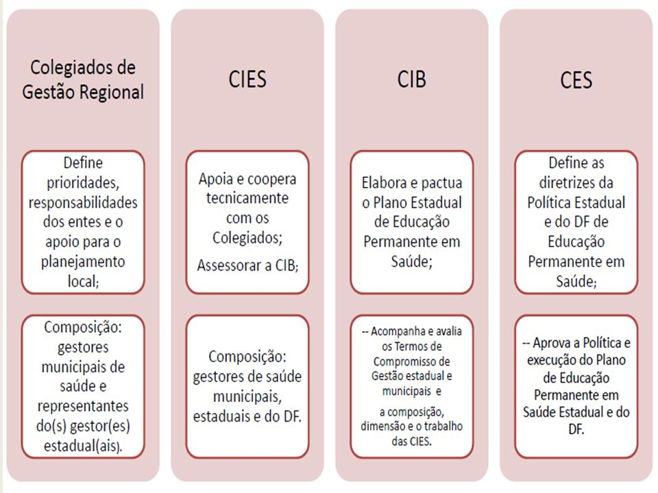 Estruturação de um PAREPS Caracterização da região e Identificação do(s) problema(s) de saúde.