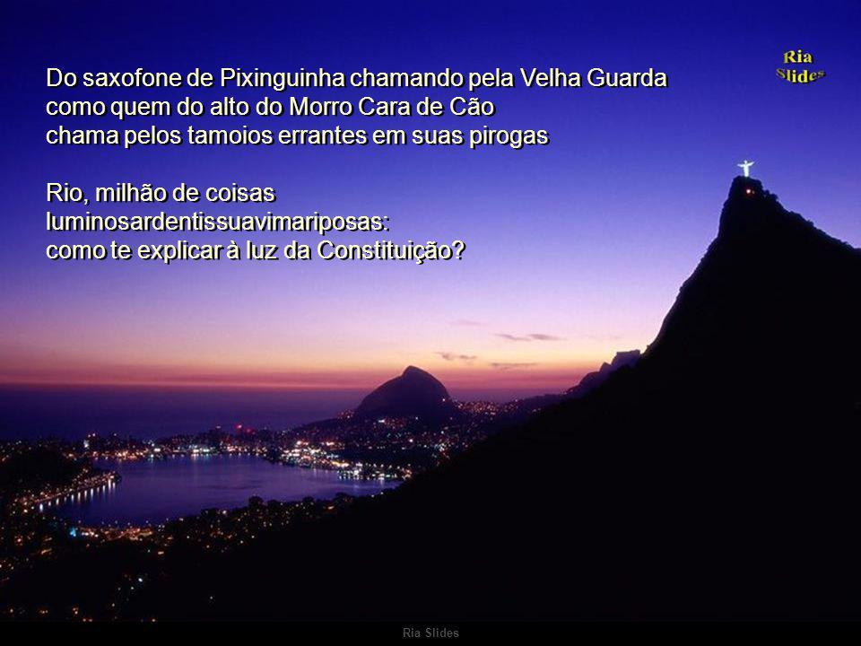 Ria Slides Rio-tato- -vista-gosto-risco-vertigem Rio-antúrio Rio das quatro lagoas de quatro túneis irmãos Rio-tato- -vista-gosto-risco-vertigem Rio-a