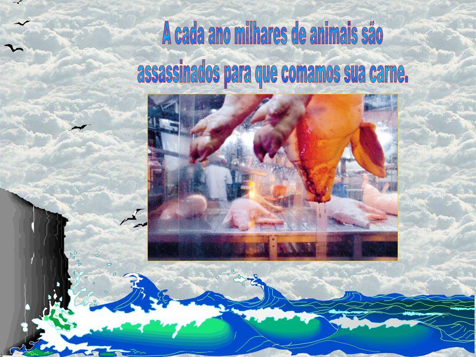 Ed Pape Think Again Brother Man Anualmente, só os Estados Unidos consomem os corpos de 9 milhões de animais de granja.