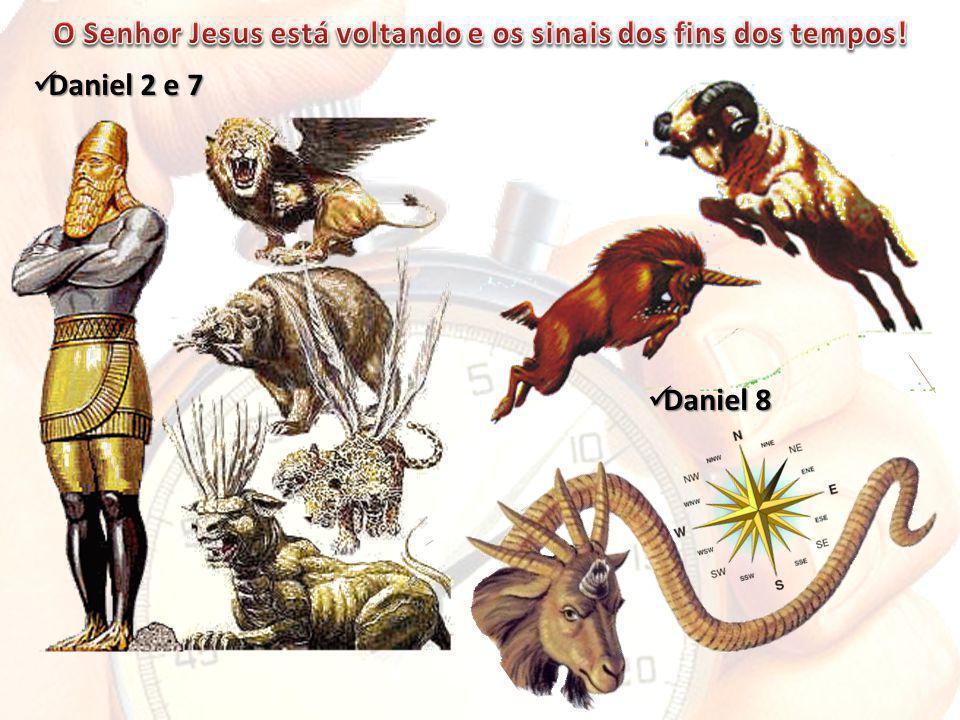 Daniel 2 e 7 Daniel 2 e 7 Daniel 8 Daniel 8