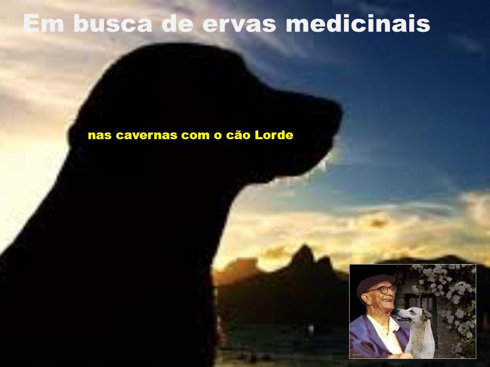Em busca de ervas medicinais nas cavernas com o cão Lorde
